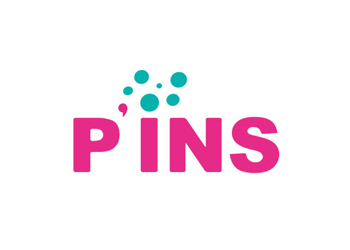 Programme P'INS